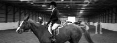 Equestrian Gallery